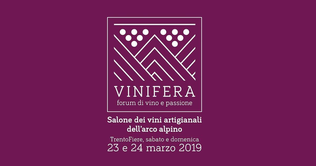Vinifera 2019